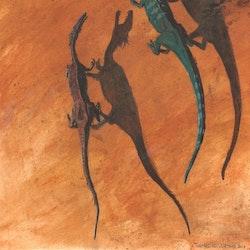 Yunnanosaurus pictures